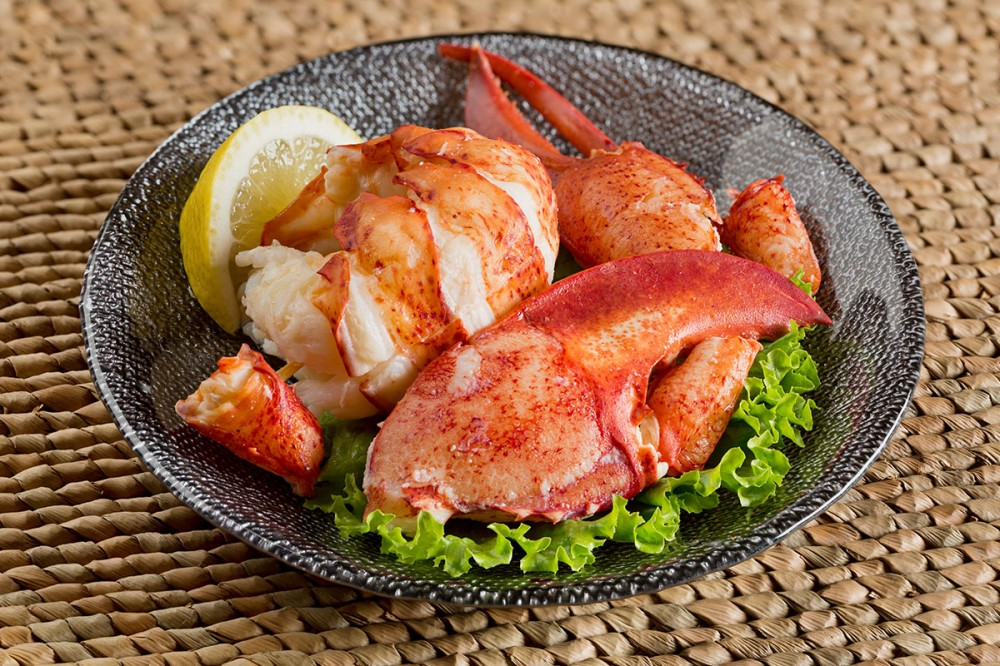 East Coast Seafood - Fresh Cooked Lobster Meat, Tail Claw & Knuckle (20%, 30%, 50%)