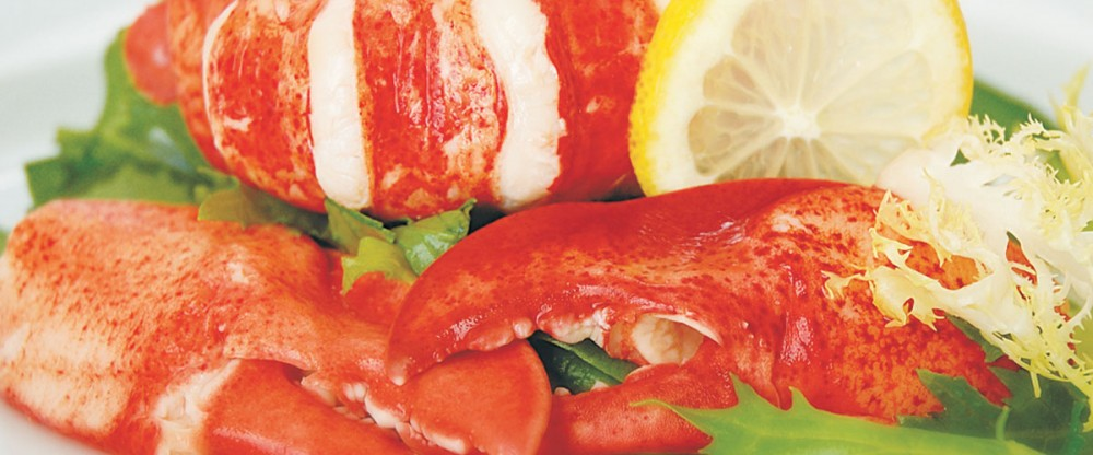 Fresh Cooked Lobster Meat